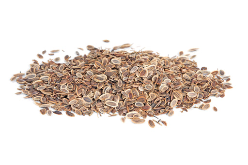 Dill Seed Whole (India) - Sunrise Botanics