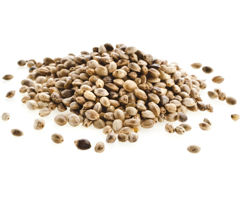 Hemp Seed Carrier Oil Organic - Sunrise Botanics
