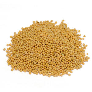 Mustard Seed Carrier Oil - Sunrise Botanics