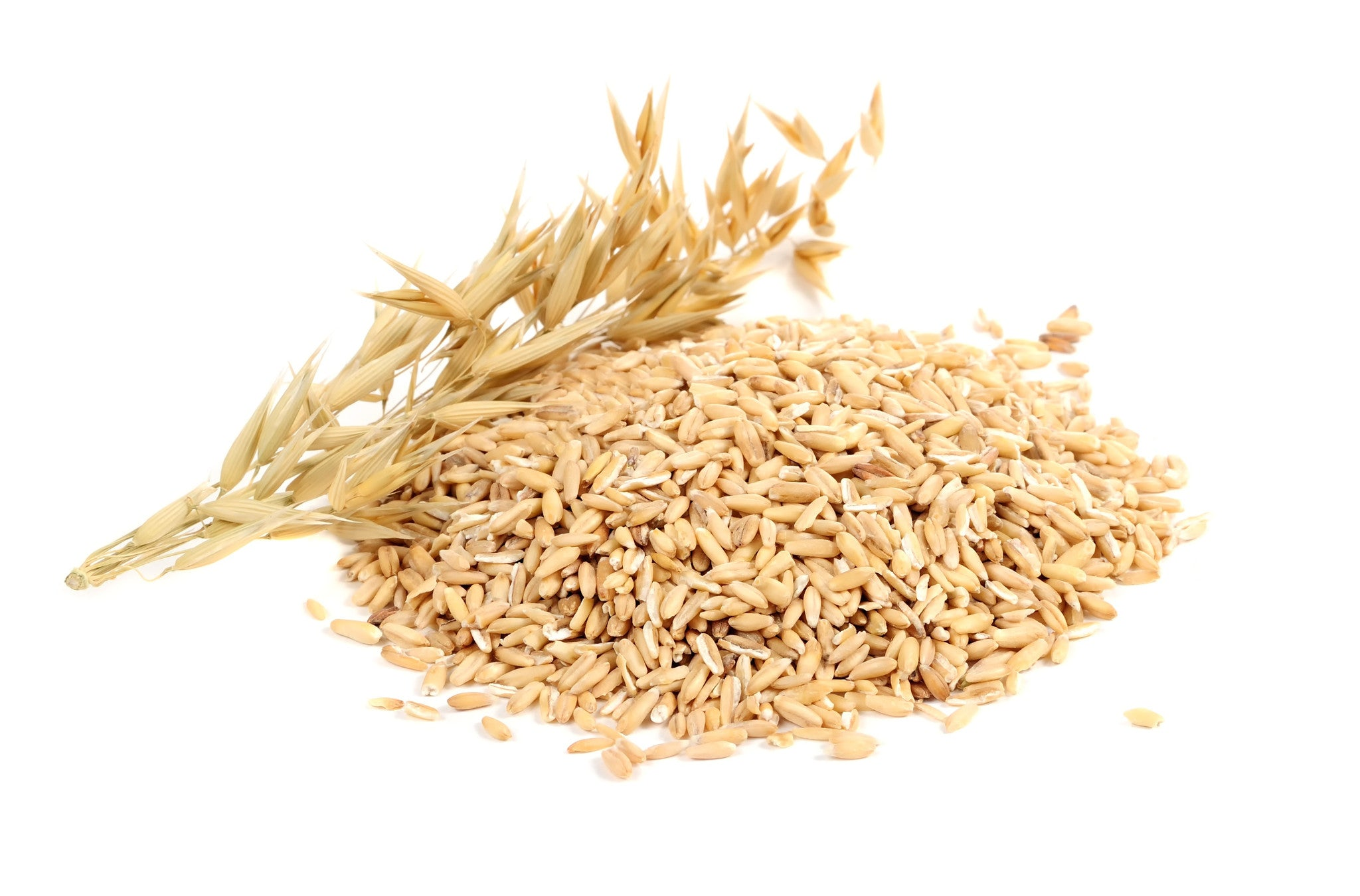 Image result for oat