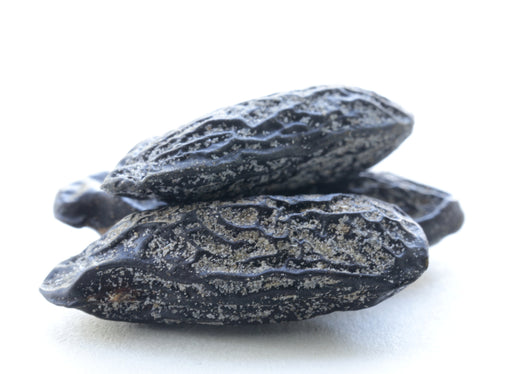 Tonka Beans Whole - Sunrise Botanics