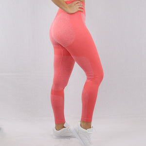 Women's Orange Flex High Waisted Seamless Gym Leggings