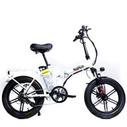 Green Bike Electric Motion Big Dog Extreme 48V 750W Folding Ebike