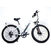 Green Bike Electric Motion EM26 48V 750W