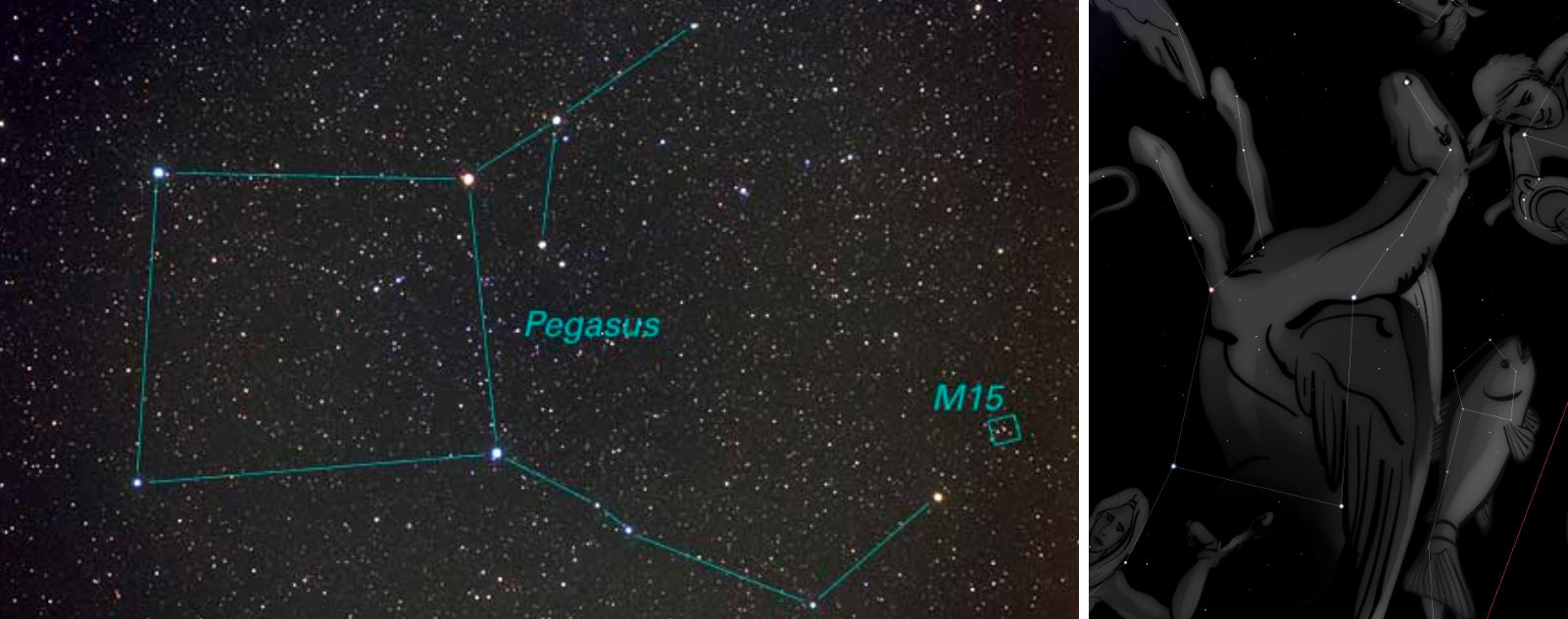Constellation du Pégase
