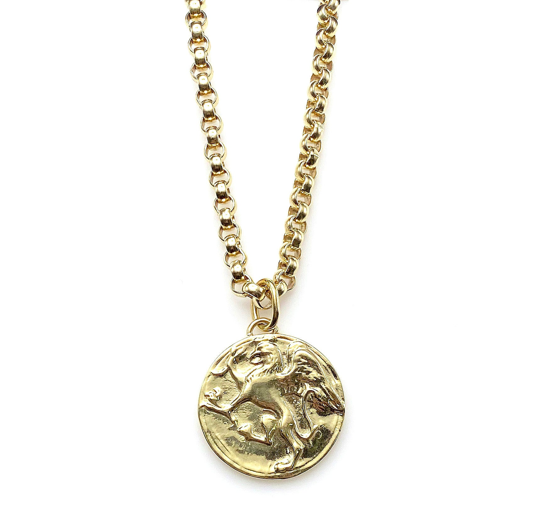 Model wearing Large Griffin Coin Pendant Necklace, 2 pc set