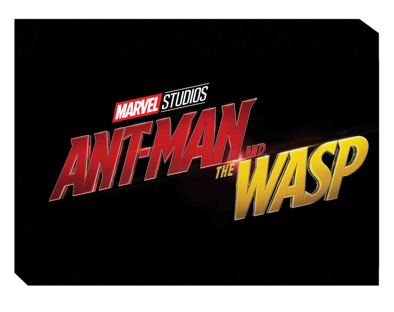 MARVELS ANT-MAN AND WASP ART OF MOVIE HC