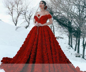 Plus size Lace Ball Gown with Cathedral Train