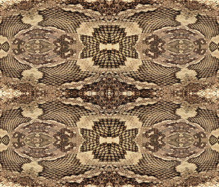 Serpentine Dream | Recursia™, LLC