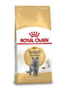 Royal canin british shorthair - Luxory Pets