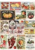 "VINTAGE SEED - 25"" x 34"" - Redesign Decor Transfer Decal"