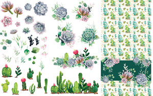 Cacti and Succulents - Belles and Whistles Rub On Decor Transfer
