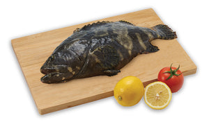 King Tiger Grouper 龙虎班  (900g - 1kg)