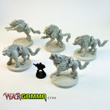 Battle Wolf War Mounts - Set of 5