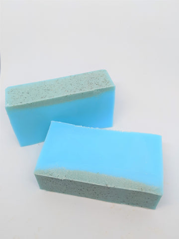 Peppermint & Eucalyptus Pumice Soap Bar