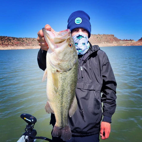 Fat Bass New Mexico
