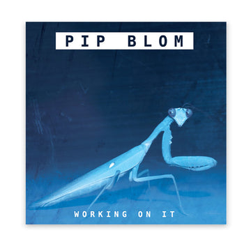 Pip Blom - Working on It