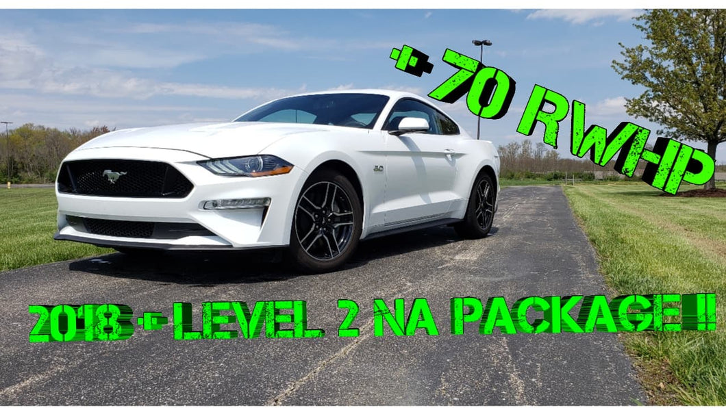 BAM 2018 +Level 2 NA Package