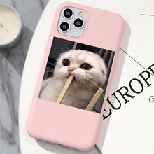 Load image into Gallery viewer, Mean Cat iPhone Case