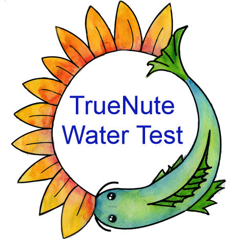 Professional Water Testing