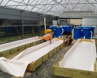 Ultra Scrim Food Grade Compliant - Best On The Market 8' x 95'