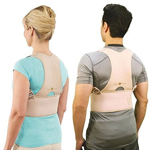 Back Support Belt