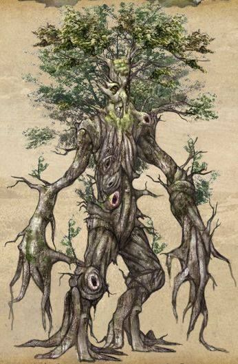 Ent Illustration