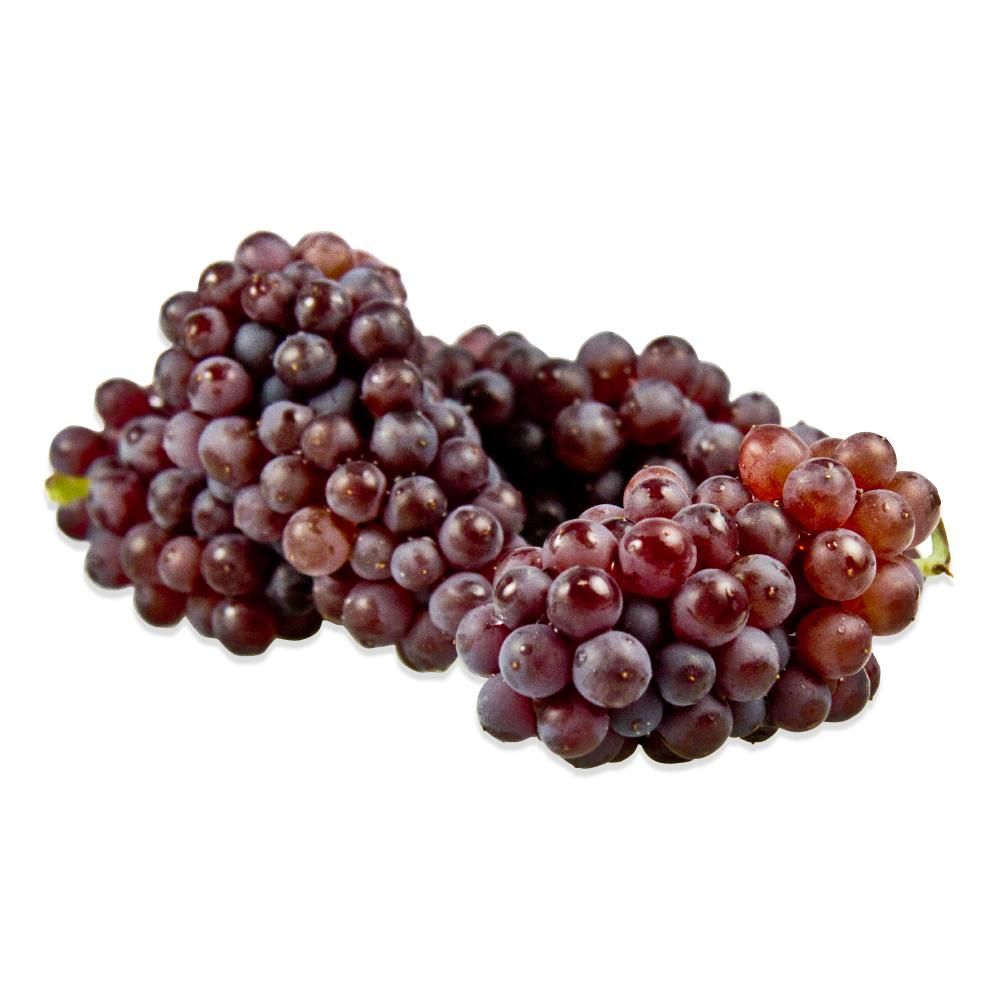 Champagne Grapes Pack - pack