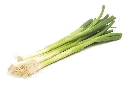 Big Green Onion - each