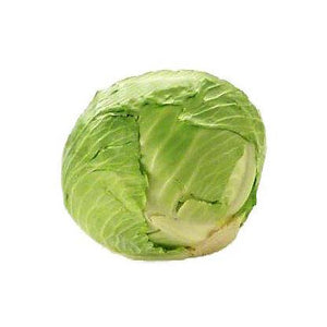 Organic Green Cabbage - each