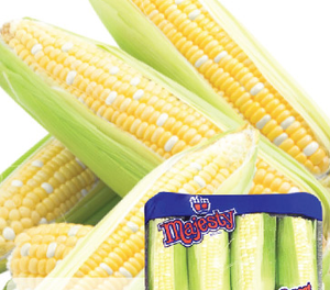 Packed Corn - pack
