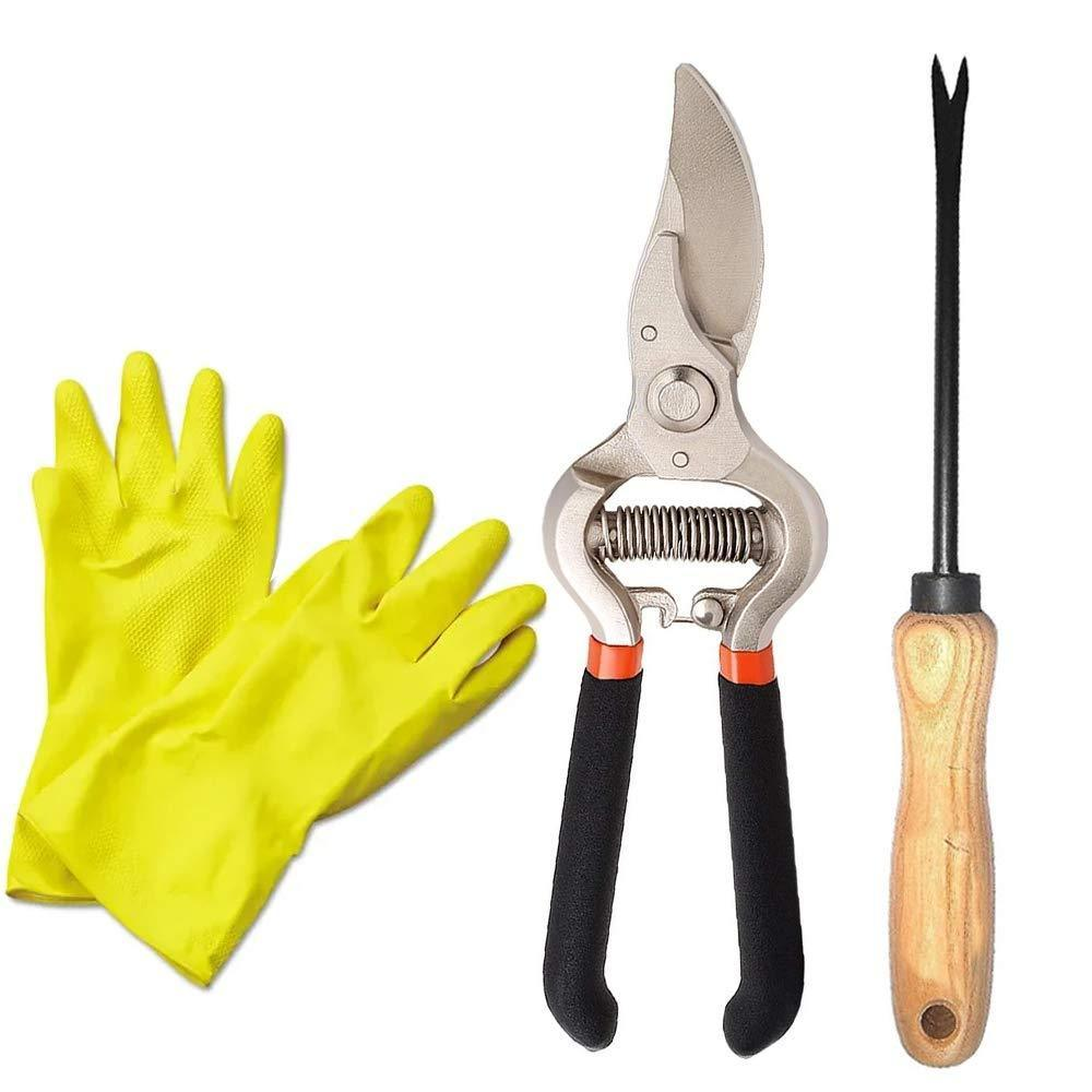 Your Brand Garden Combo - Garden Shears Pruners Scissor (8-inch) & Hand Weeder Straight with 1-Pair Rubber Gloves
