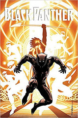 Black Panther: A Nation Under Our Feet Book 2 (Paperback)