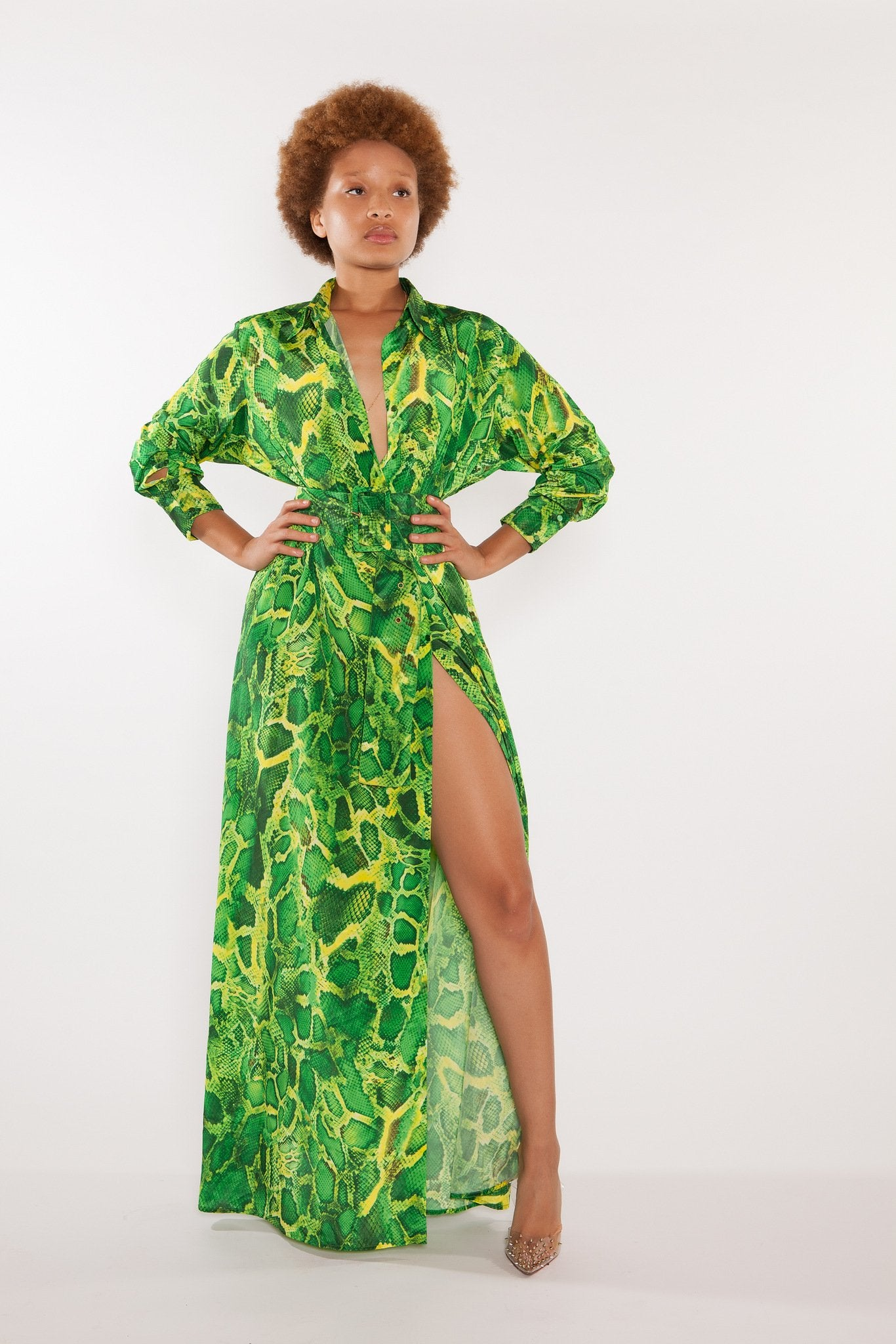 Sai Sankoh Algeria Green Printed Snake Shirt Dress
