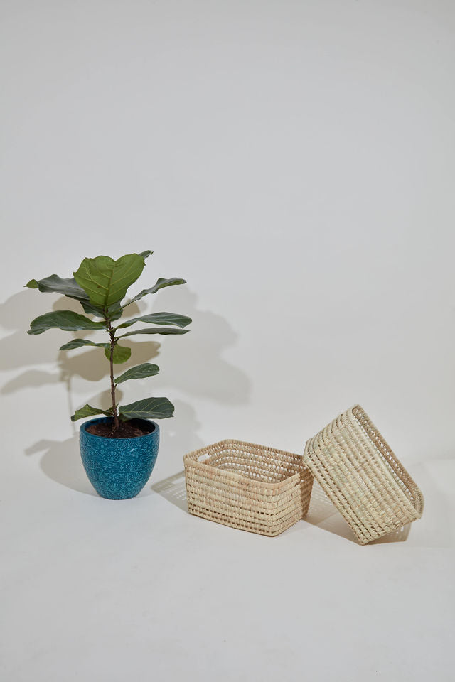Palm Storage Basket - Set of 2