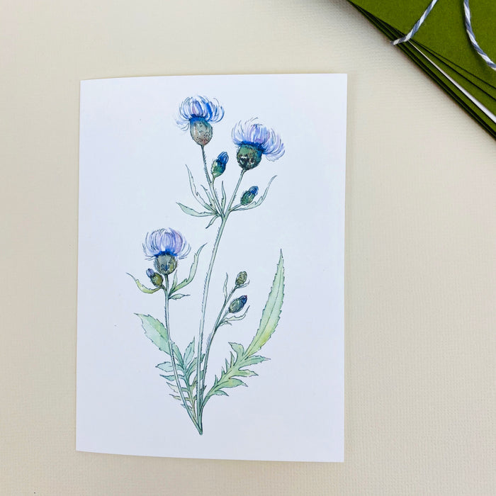 Notecard Set - Thistle