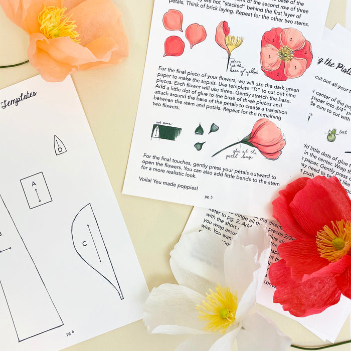 Crafting Kit- Paper Poppies