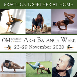 [Zoom] Injury, Prevention and Preparation  For Arm Balance by Jai Kumar (75min) at 6.30pm Mon on 23 Nov 2020 -completed