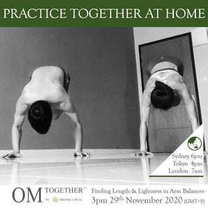 [Zoom] Finding Length & Lightness in Arm Balances by Kevin and Yeonglee (75 min) at 3pm on 29 Nov 2020 -completed