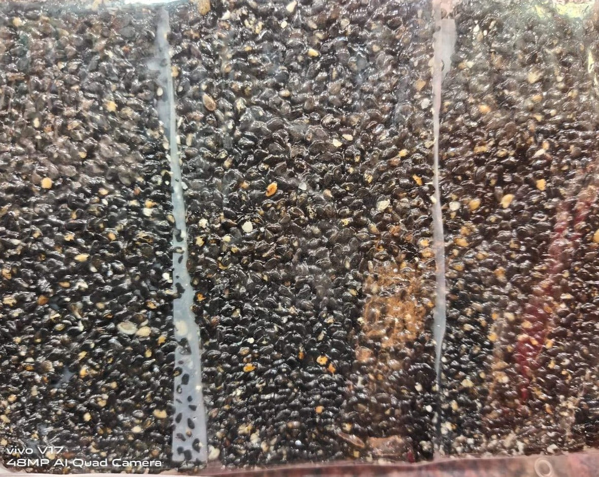 Black Till Chikki with Jaggery Only