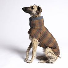 Laden Sie das Bild in den Galerie-Viewer, Hundemantel Brooklyn - Waxed Tartan