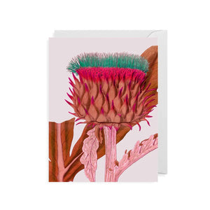 Any Occasion Card - Cardoon