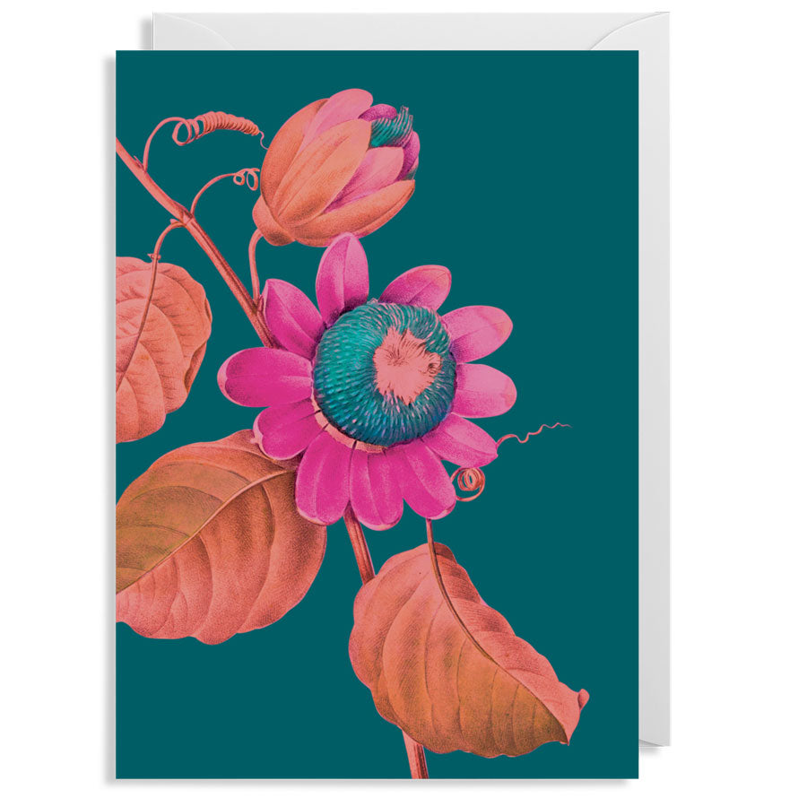 Kew Passion Flower Card