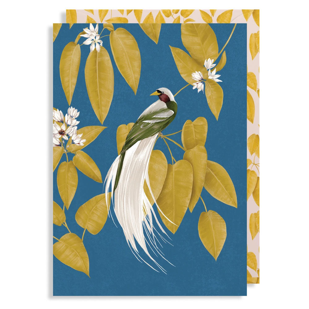 Any Occasion Card - Bird of Paradise, Anna Glover
