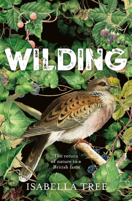 Wilding : The Return of Nature to a British Farm by Isabella Tree (Author)