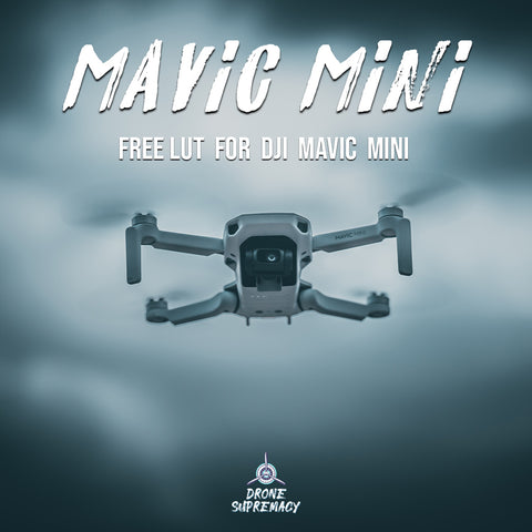 FREE DJI Mavic Mini LUT