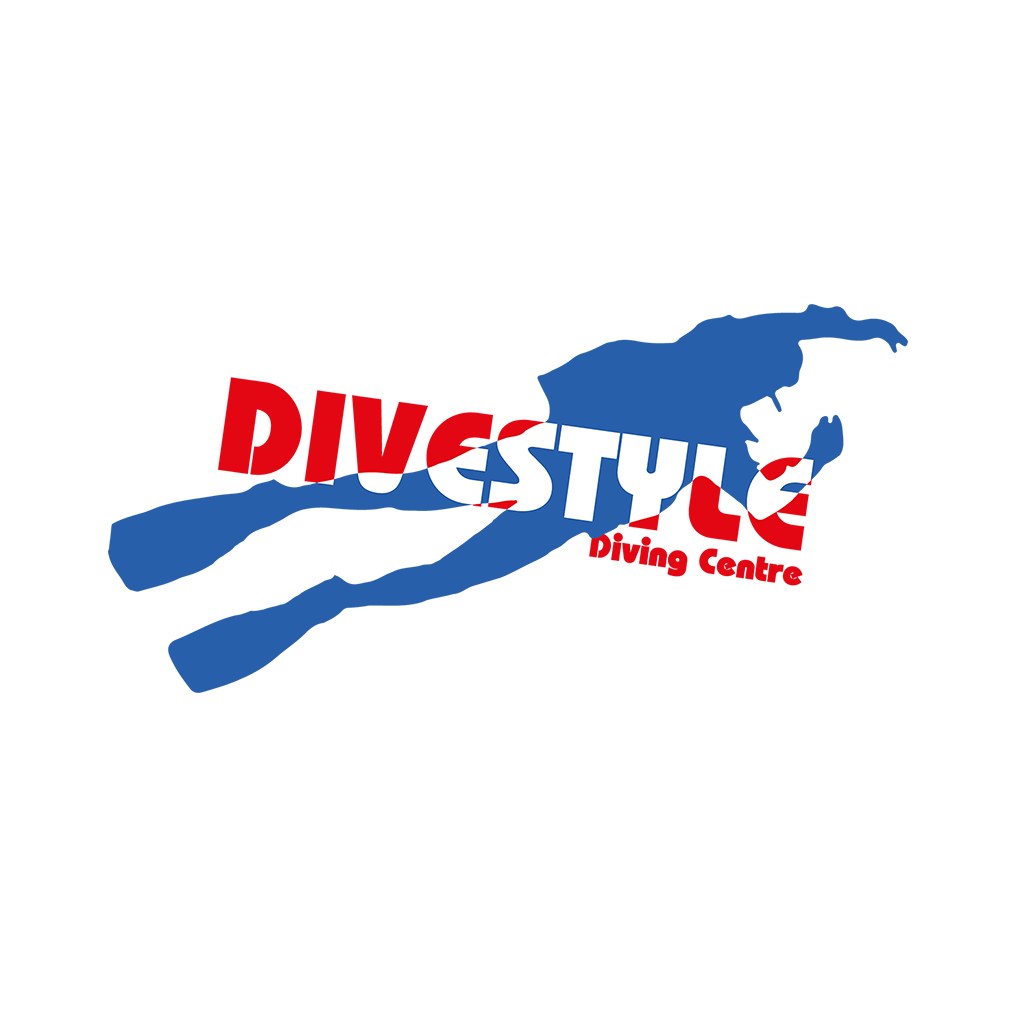 Happy 20th Bithday DiveStyle
