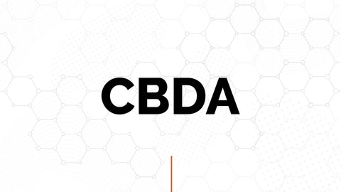 CBDA graphic demonstrating its role in the endocannabinoid ecosystem
