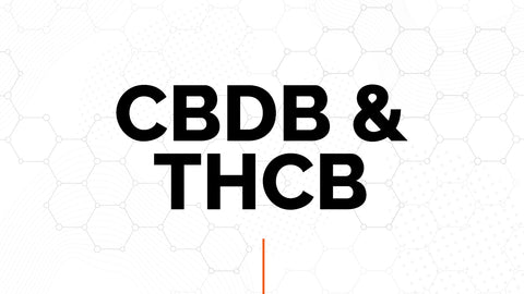 CBDB & THCB are newly discovered painkillers