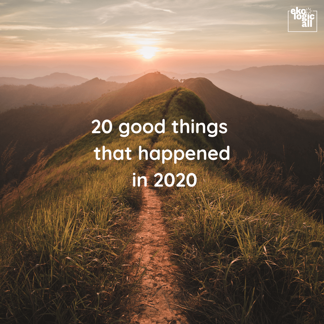 20 good things that happened in 2020